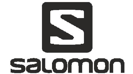 Salomon 450x250-01